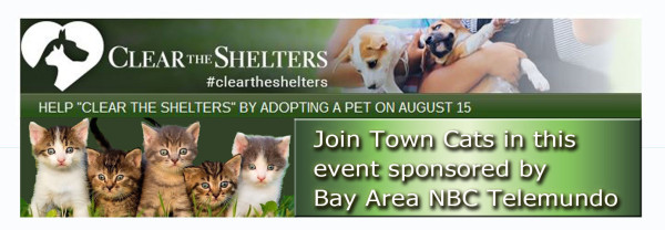 ClearTheSheltersAug15