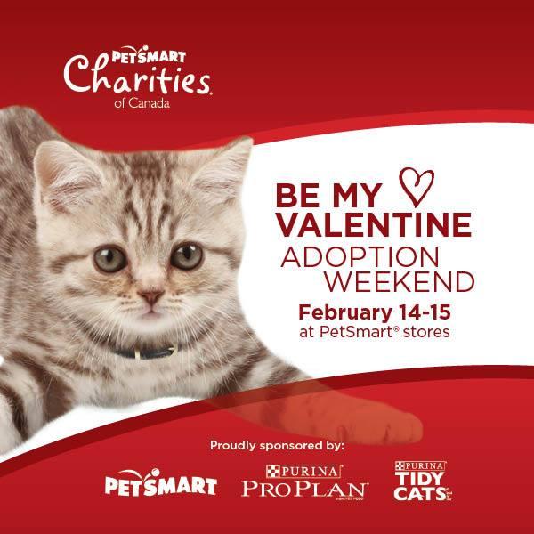 Find love at Petsmart this Valentines Weekend