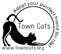 Town Cats