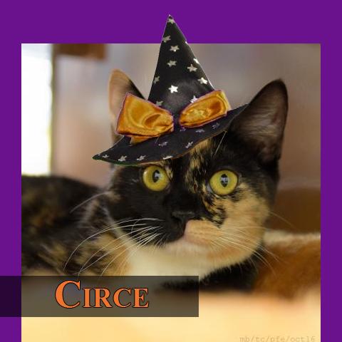 circe2