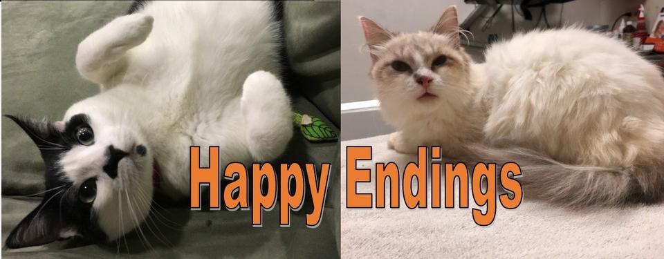 HappyEndingsSlider