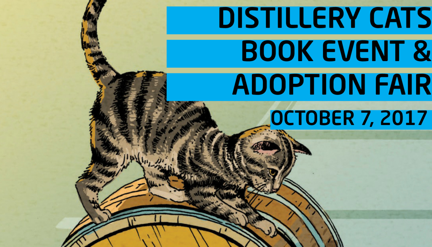 Distillery cats Slider Image