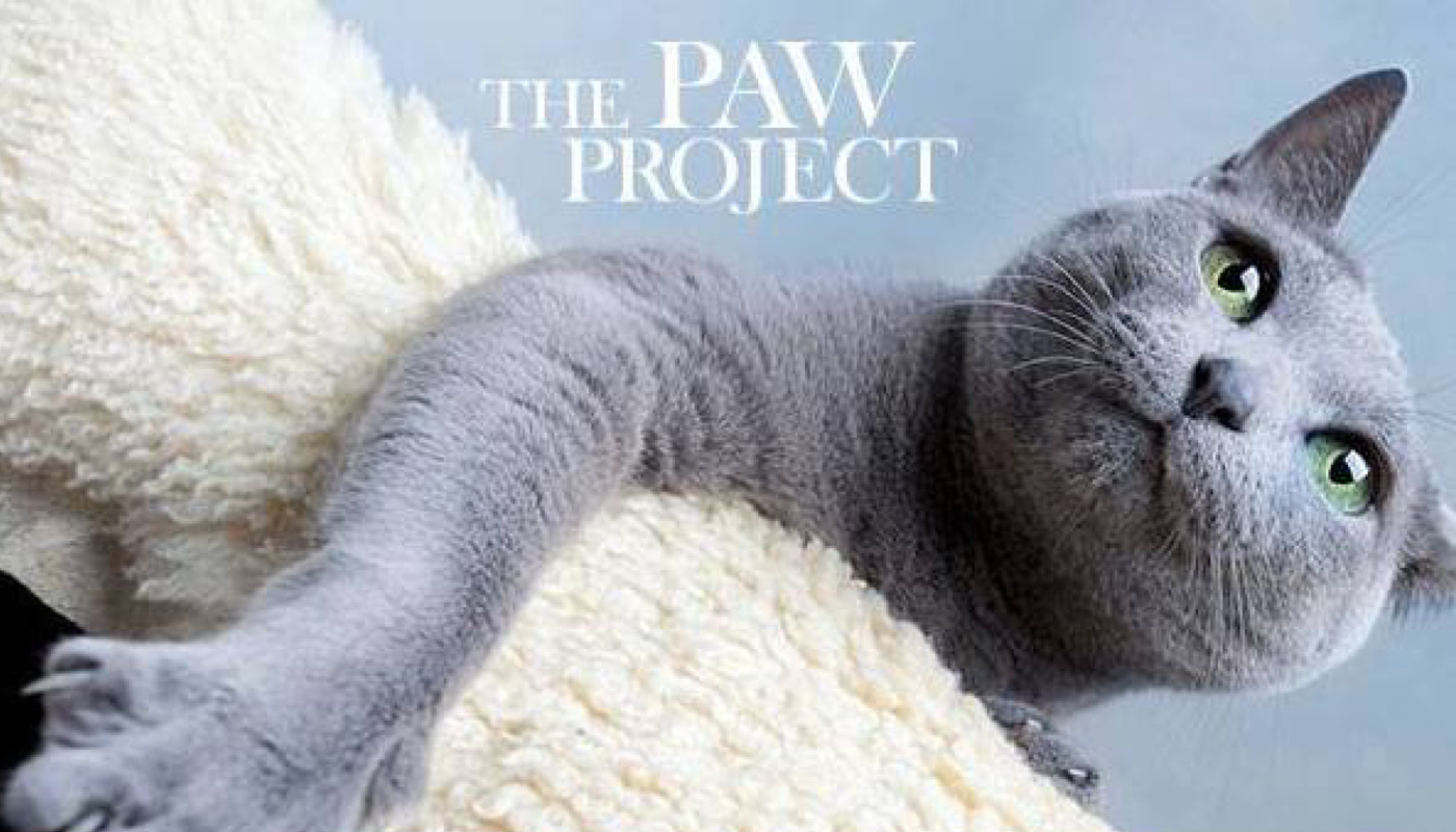 Paw Project Slider Image