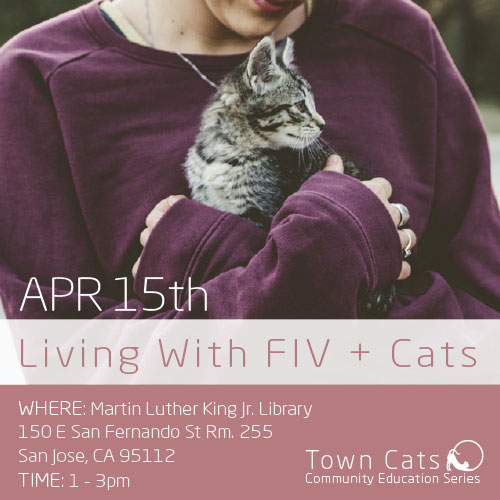 APR 15th | Living With FIV + Cats As Part Of Town Cats 2018 Community Education Series