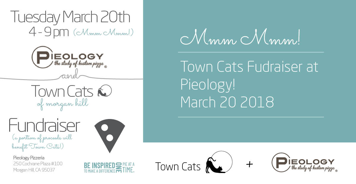 Mar 20th | Fundraising Event At Pieology!