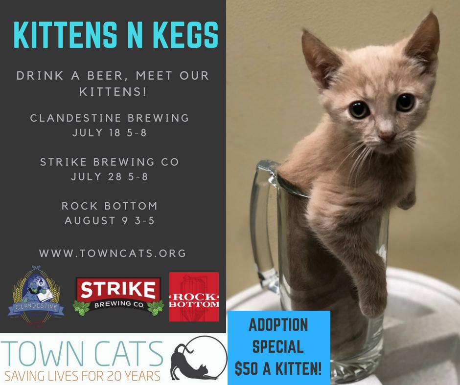 Kittens N Keggs