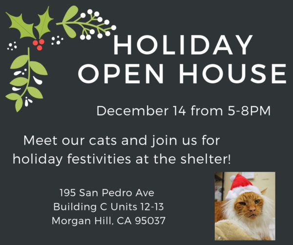 Town Cats Holiday Open House