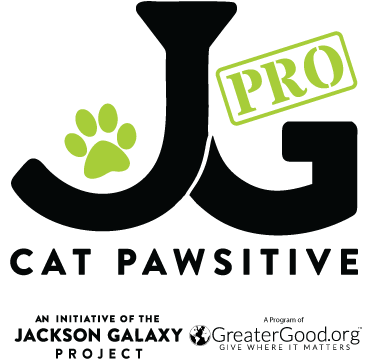 The Success of Cat Pawsitive Pro on our Legacy Cats