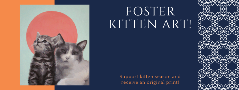 Click 'Kitten Campaign' to Support